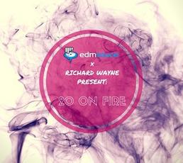 EDM Sauce: 20 on Fire
